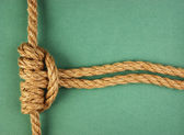 Rope with marine knot on the green background — Stock Photo