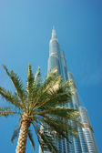 Burj Khalifa - the world's tallest tower at Downtown Burj Dubai — Stock Photo