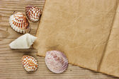 Un morceau de papier et de coquillages sur une planche en bois ancien — Photo