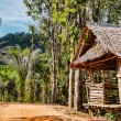 Foto Stock: Old wooden abandoned house in tropics