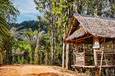 Old wooden abandoned house in the tropics — Stock Photo