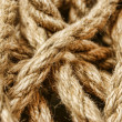 Background of ropes — Stock Photo #26653039