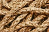 Background of the ropes — Stock Photo