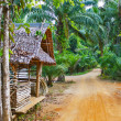 Old wooden house  in the tropics — Stockfoto