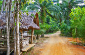 Old wooden house in the tropics — Foto Stock