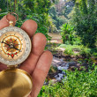 Compass in hand and a tropical jungle — Stock Photo #30531509