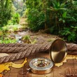 Stock Photo: Compass on map in tropical jungles