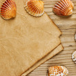 A piece of paper and seashells on old wooden board — Stockfoto