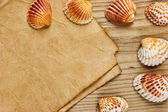 A piece of paper and seashells on old wooden board — Stock Photo