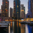 Dubai Marinat night. United Arab Emirates — Stock Photo #32515303