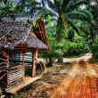 Old wooden abandoned house in tropics — Zdjęcie stockowe #32515323