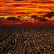 Landscape plowed field, sunset — Stock Photo #32515331