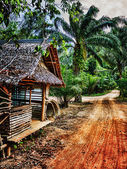Old wooden abandoned house in the tropics — Stok fotoğraf