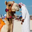 Arab man and camel on the beach in Dubai — Stock Photo #33479433