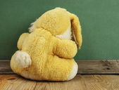 Old toy bunny on a wooden floor — Stock Photo