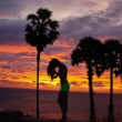 Silhouette on sunset background — Stock Photo