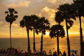 Palm trees on the Andaman Sea — Stock Photo