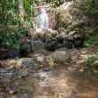 Waterfall in the tropical jungles — Stock Photo #37778869