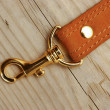 Stock Photo: Leather strap with carabiner