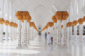 Sheikh zayed-moskén, abu dhabi, förenade arabemiraten — Stockfoto