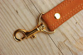 Leather strap with carabiner — Stock Photo