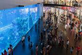 Centre commercial dubai mall — Photo