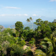 Panoramic view from the hill Big Buddha in Phuket Thailand — Stock Photo