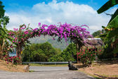 Arch of purple flowers in the garden at the entrance — Stock Photo