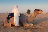 Boy and a camel — Stock Photo
