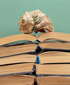 Old books on a wooden shelf and seashell — Stok fotoğraf