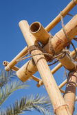 Bamboo trellis — Stock Photo