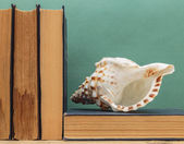 Old books on a wooden shelf and seashell — Foto Stock