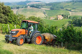 Fields full of vines and tractor in Tuscany — Stock Photo
