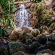 Waterfall in the tropical jungles — Stock Photo #49565865