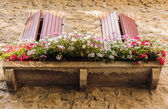 Window  decorated with flower pots and flowers — Stock Photo