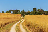 Country road in Italy — Stock Photo