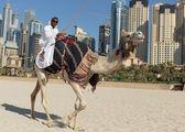 A man riding a camel on the beach — Stock Photo