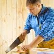 Carpenter cuts the plank — Stock Photo #12104188