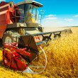 Stock Photo: Combine harvester close up