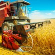 Combine harvester close up — Stock Photo #21725081