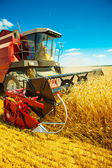 Combineren harvester close-up — Stockfoto