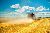 Combine harvester in work — Stockfoto