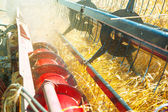 Very close up combine harvesting wheat — Stok fotoğraf