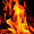 Stock Photo: Burning fire