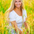 A romantic girl in the field whea — Stock fotografie