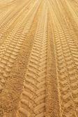 Traks on sandclose up — Stock Photo
