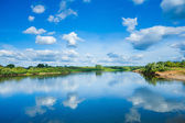 Wide river with reflection and green bush on coasts and blue cloudy sky — Stock Photo