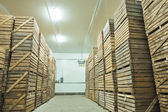 View on crates  of potato — Stock Photo