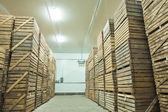 View on crates  of potato — Stock Photo