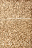 Close up view on brown leather texture — Stock Photo
